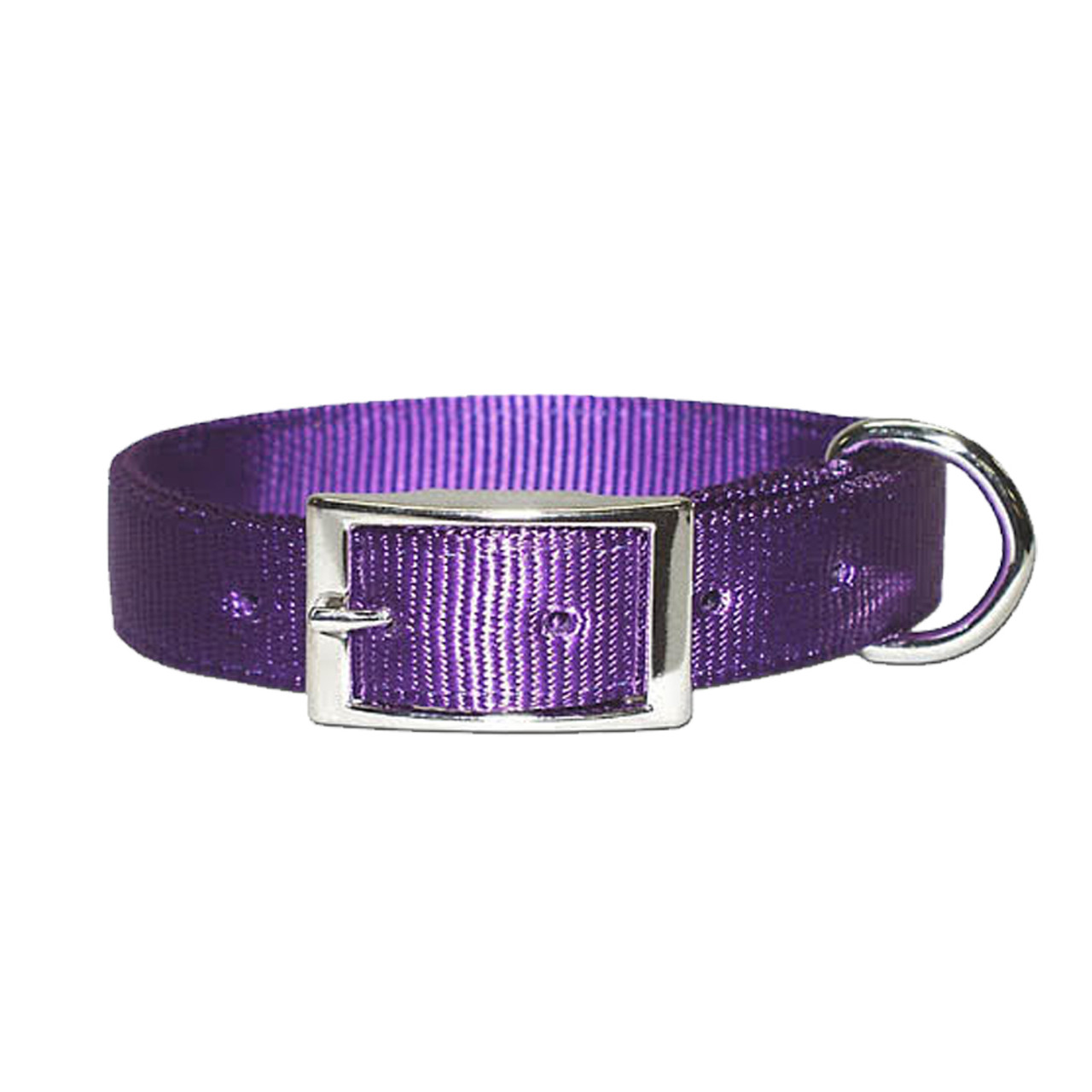 Bravo Two-Ply Nylon Dog Collar