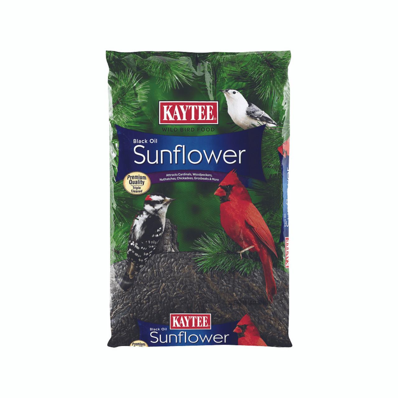 Kaytee Black Oil Sunflower for Wild Birds