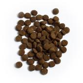 Open Farm Wild Caught Salmon Recipe Dry Cat Food