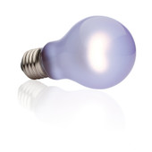 Exo Terra 100W Daytime Heat Lamp