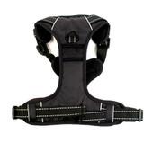 BizzyBoi Front Range Dog Training Harness