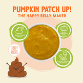 Weruva Pumpkin Patch Up! Pumpkin with Ginger & Turmeric Supplement for Dogs & Cats