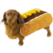 Casual Canine Halloween Hot Diggity Dog Pet Costume, Assorted - Front, Mustard