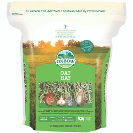 Oxbow Oat Hay for Small Animals