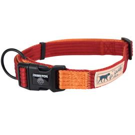 Hamilton Go Boldly Red & Mango Adjustable Dog Collar