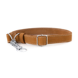 Classy Martingale Style Tan Leather Dog Collar