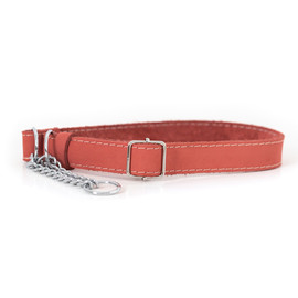 Classy Martingale Style Coral Leather Dog Collar