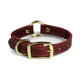 Omni Pet Latigo Leather Dog Collar