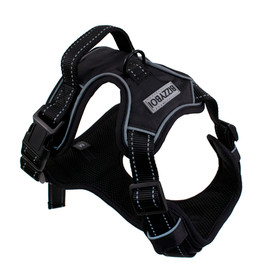 BizzyBoi Front Range Dog Training Harness