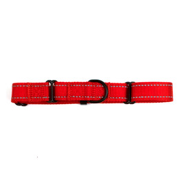 Fetch Your Own Adventure Nylon Reflective Martingale Dog Collar
