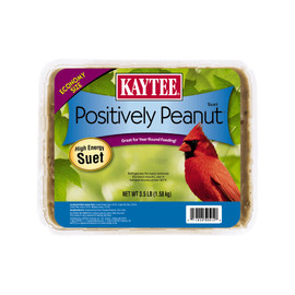 Kaytee Positively Peanut Suet Wild Bird Food
