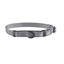 Friends Forever Nylon Reflective Martingale Dog Collar - Front