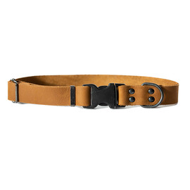 Classy Dog Luxury Sport Style Leather Dog Collar - Brown