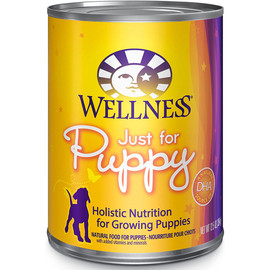 Wellness Complete Health Just for Puppy Pate Canned Dog Food - Front