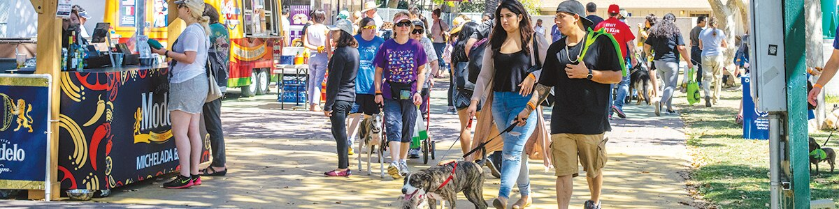 People and dogs walking down a crowded path at the Bay Area Pet Fair