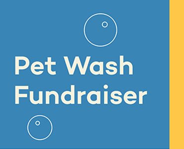 Click here for more information about our pet wash fundraiser.