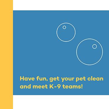 have fun and meet K-9 teams
