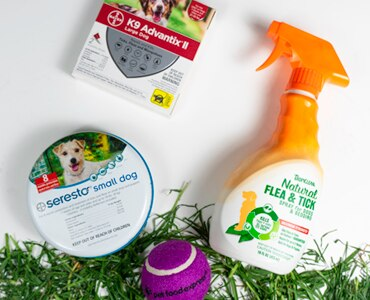 Tropiclean Flea and Tick spray with Seresto Small Dog Flea Collar and K9 Advantix II on grass with a purple Pet Food Express tennis ball