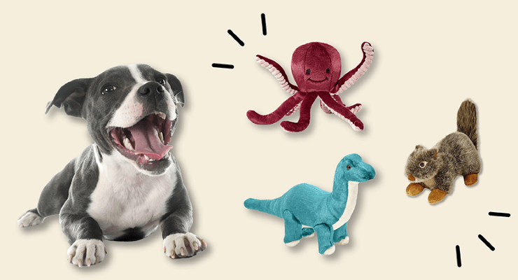 dog with fluff n tuff toys
