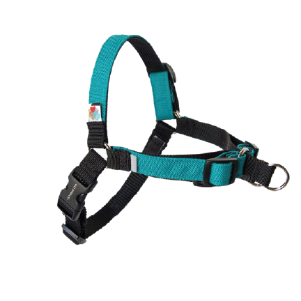 click to shop Wildebeest Linden No Pull Dog Harness