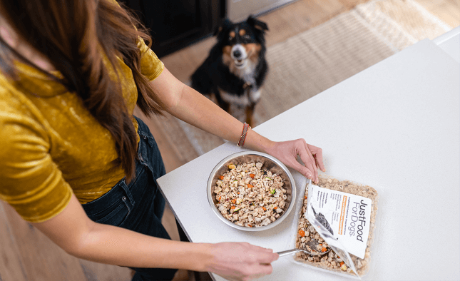 Dog waiting to eat JFFD Daily Diets