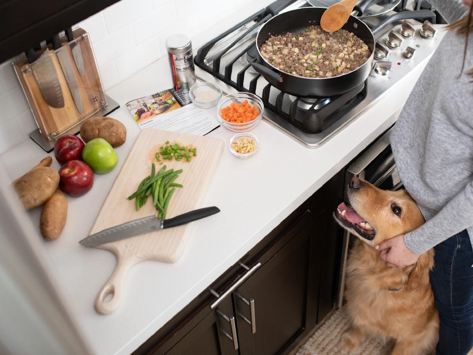 Dog waiting to eat JustFoodForDogs food