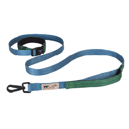 click to shop Hamilton Go Boldly Ocean & Green Dog Leash.