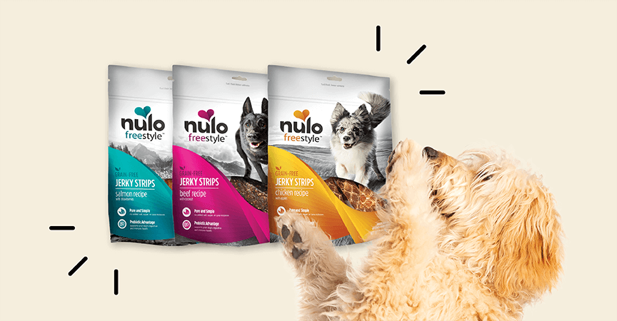 dog with nulo treats