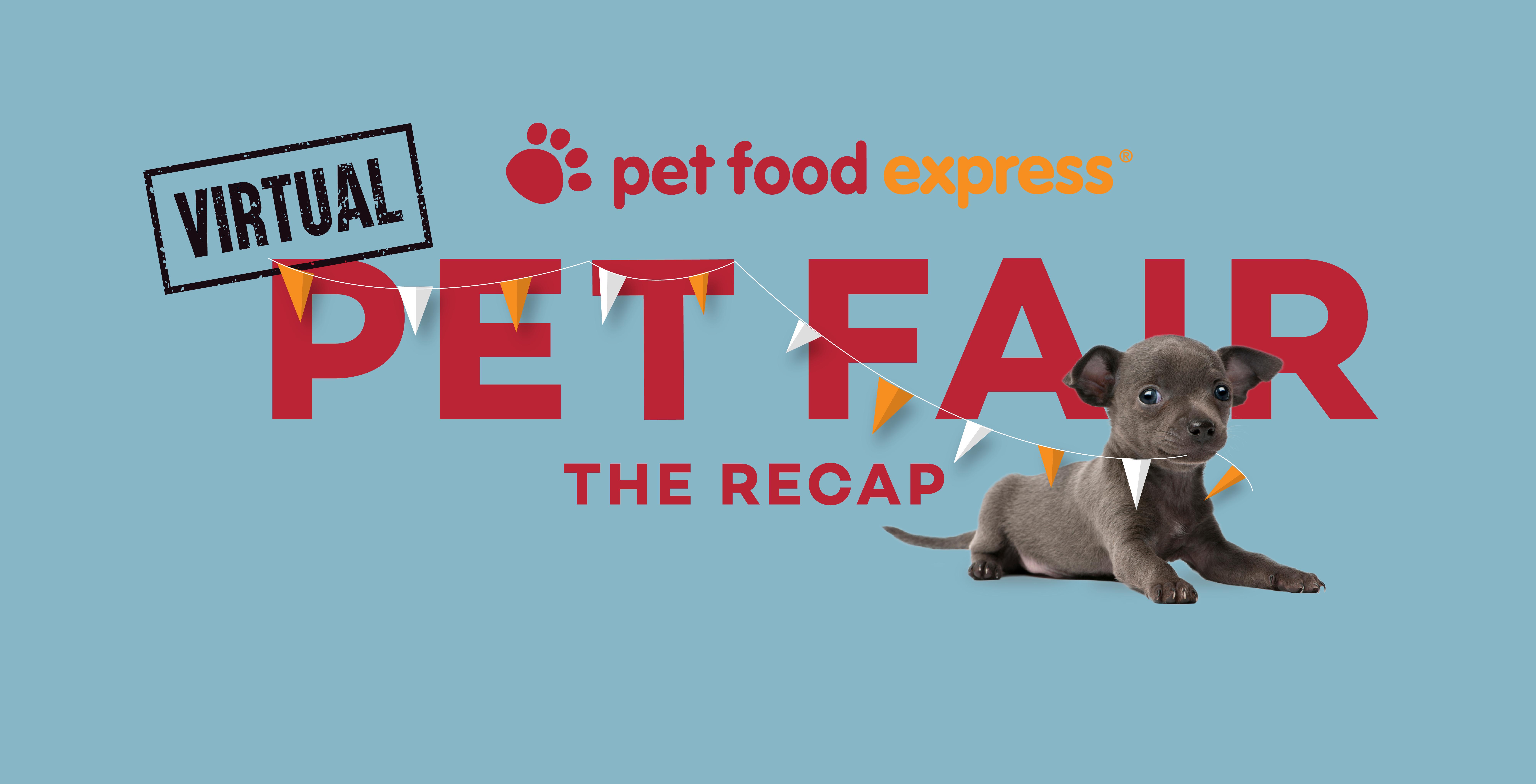 Pet Fair Recap Photo