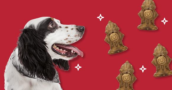 Dog with RedBarn treats. Click here to shop RedBarn Dental Treats.