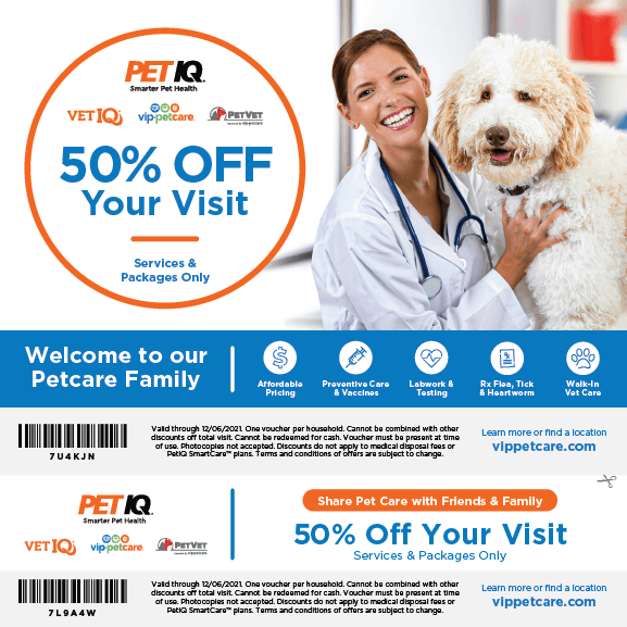 VIP Coupon: 50% Off Your Visit