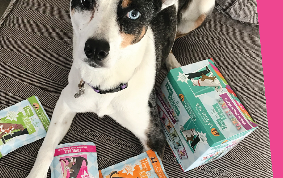 Dog next to Weruva products