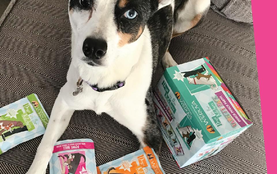 Dog next to Weruva products