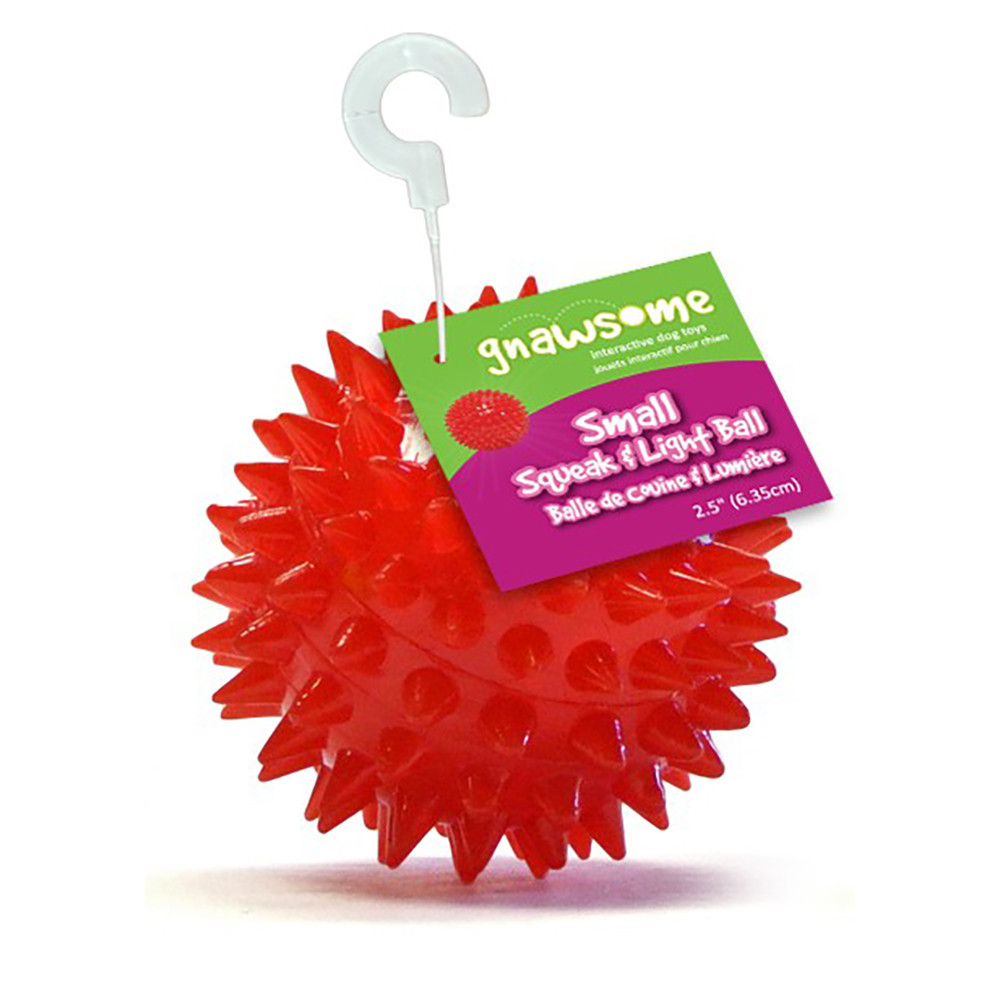 click here to shop Gnawsome Squeak and Light Ball Dog Toy, Assorted Colors.