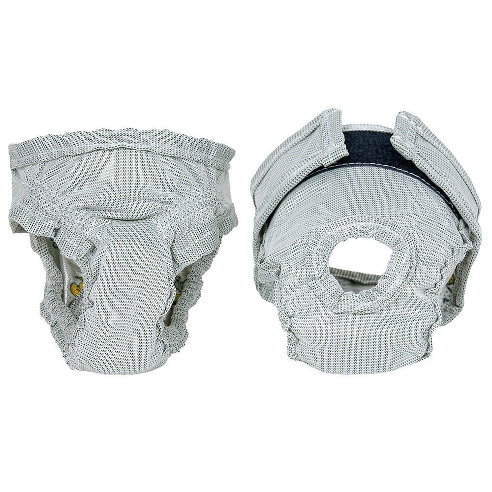 click here to shop PoochPants Reusable Dog Diapers