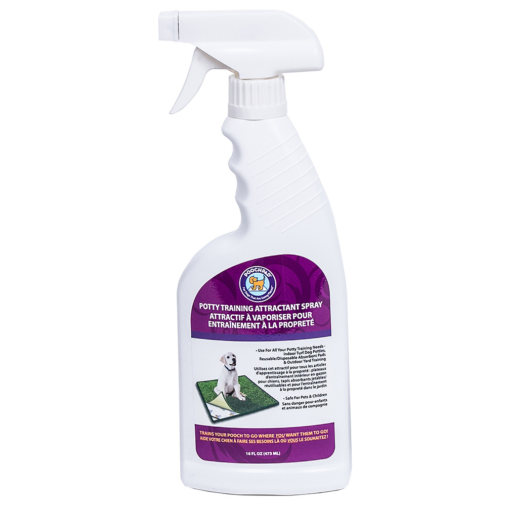 click here to shop PoochPad Dog Attractant Spray