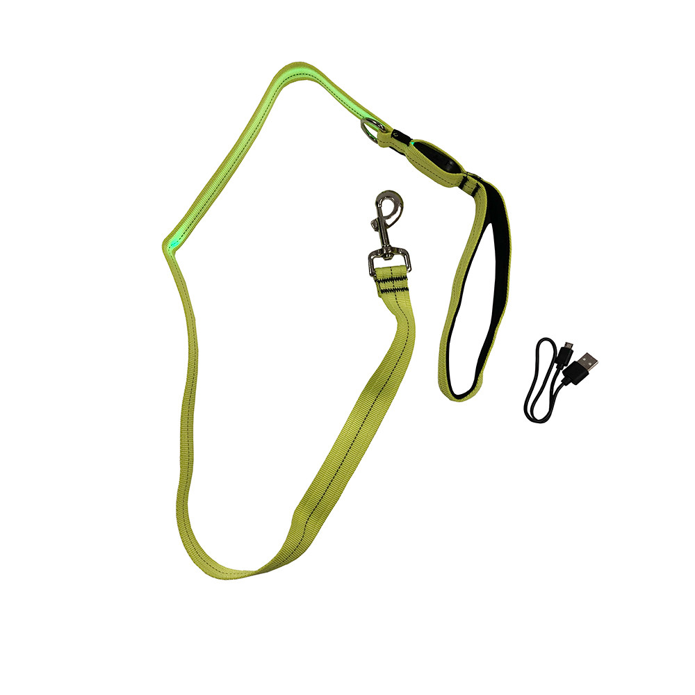 click here to shop Rechargeable Lighted Dog Leash
