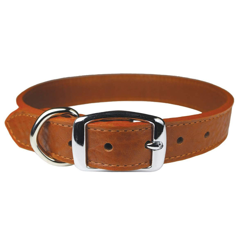 click here to shop Luxe Leather Dog Collar