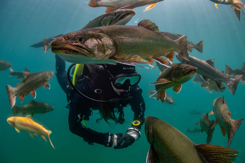 scuba diving solihull