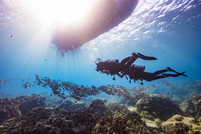 Learn to scuba dive near me