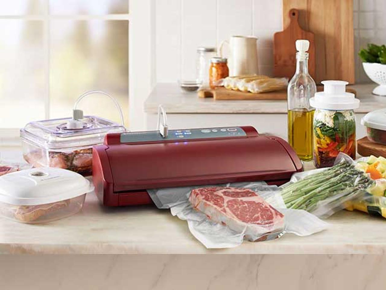 FoodSaver V2800 Series Mega Bundle- Eggplant- FM2870-035