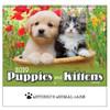 2019 Puppies & Kittens Calendars - Spiral