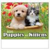 2019 Puppies & Kittens Calendars - Spiral (BLANK)