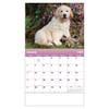 2019 Puppies & Kittens Calendars - Spiral (OPEN BLANK)