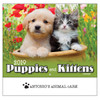 2019 Puppies & Kittens Calendars - Stapled