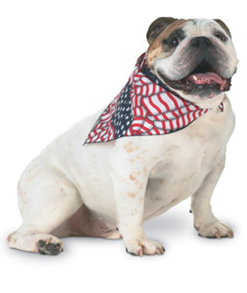 Doggie Bandanas, Custom Printed Pet Promos