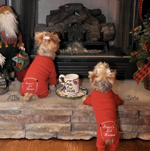 Christmas Dog Pajama - Santa's Lil' Helper