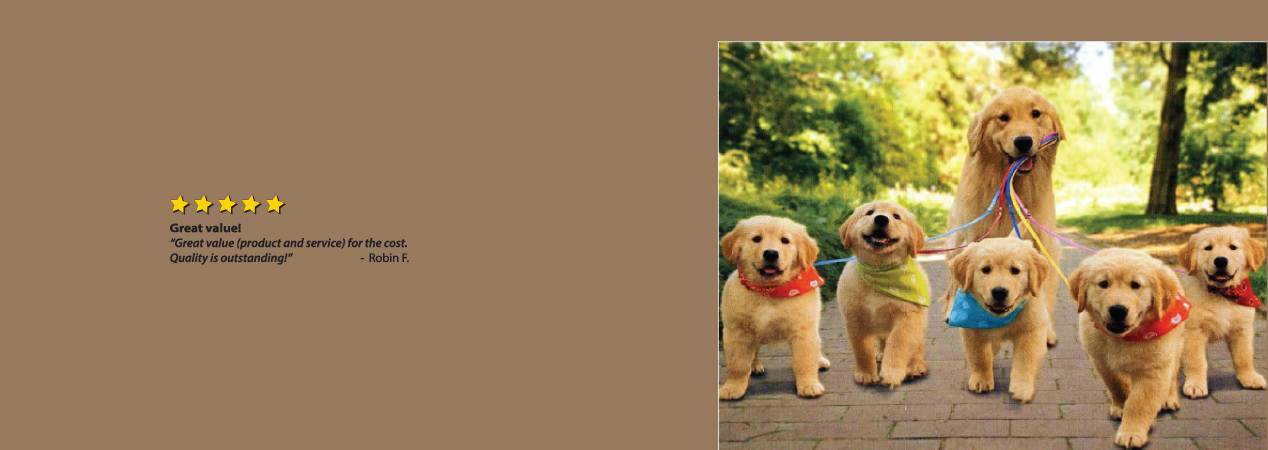 Custom Printed Doggie Bandanas