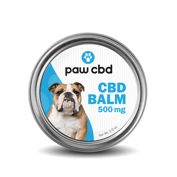 """cbdMD Pet CBD Balm For Dogs - 500mg 2oz CBD balm is made with our Superior Broad Spectrum formula combined with ingredients to soothe, nourish, and protect. You can use it on paws, elbows, rough noses, and any other """"hot spots"""" on the skin that may need some extra comfort and care."""
