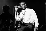 Muddy Waters photo by Richard E. Aaron